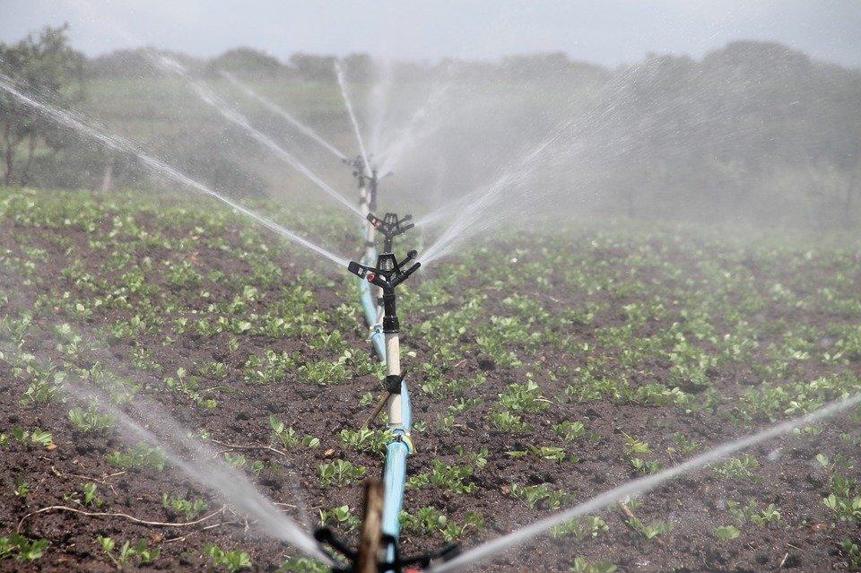 irrigation-588941_960_720[1]
